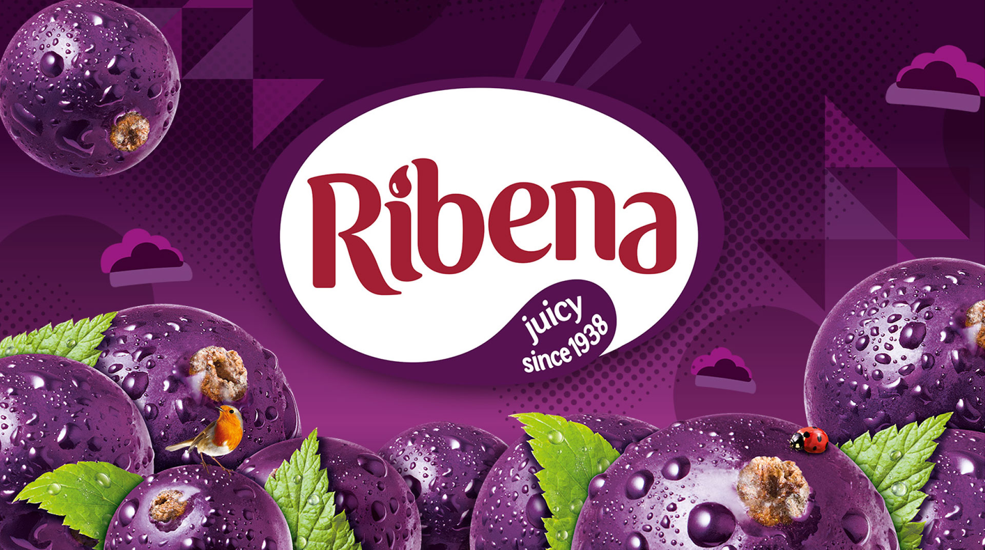 Ribena - Juicy since 1938 Image
